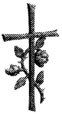 Kreuz.jpg - 80,58 kB